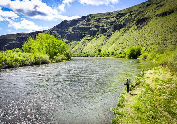 Fishing on the Yakima River near Untanum