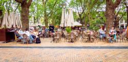Delft Cafe