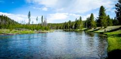 Fishing in Yellowstone